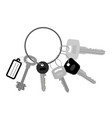 key set with keyring vector image