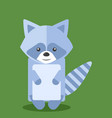 raccoon on white background vector image vector image