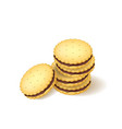 realistic detailed 3d biscuits cookies or sandwich vector image
