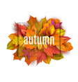 autumn banner leaves background card with vector image vector image
