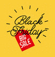 black friday big sale lettering advertising vector image