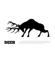 black silhouette fighting deer forest animal vector image vector image