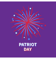 Patriot day Big fireworks night sky Star and strip vector image vector image