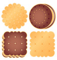 set of cute choclate cookies vector image