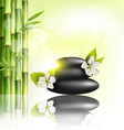 Stack of spa stones with cherry white flowers vector image vector image