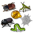world of insects beetles grasshopper and others vector image vector image