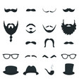 mens beard and moustache styles props vector image