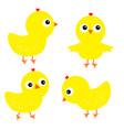 chicken chick bird set face head cute cartoon vector image vector image