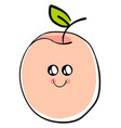 cute apricot on white background vector image vector image