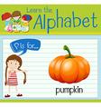 Flashcard alphabet P is for pumpkin vector image