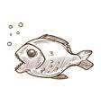 piranha fish side view hand drawn sketch vector image vector image