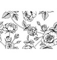 seamless pattern rose flower and leaf hand drawn vector image vector image