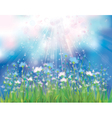 spring blue flowers vector image
