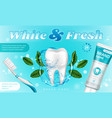 toothpaste with mint and toothbrush promo poster vector image