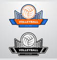 volleyball logo template with ball flying over vector image