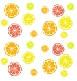 background with citrus fruits vector image