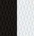 duo black white geometric background 2 vector image vector image