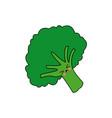 kawaii broccoli vegetable fresh farm healthy food vector image