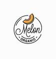 melon logo round linear logo organic slice vector image