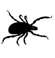 mite parasites tick silhouette isolated on white vector image