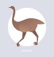 ostrich icon cartoon endangered wild animal symbol vector image vector image