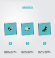 set of alive icons flat style symbols with sheep vector image