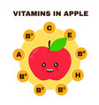 vitamins in apple infographic flat vector image