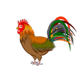 A beautiful rooster isolated on a white background vector image vector image