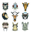 animal head in headphones animalistic vector image vector image