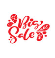 big sale red calligraphy and lettering text on vector image