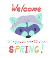 lettering inscription with raccoon vector image vector image