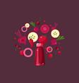 red smoothie drink in bottle ingredients flying vector image