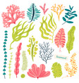 sea plants and aquatic marine algae seaweed set vector image vector image
