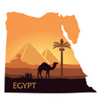 the landscape of egypt with a camel the pyramids vector image