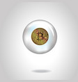 coin with bitcoin symbol in soap bubble vector image