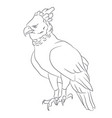 eagle sits lines vector image vector image