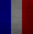 Grunge messy flag France vector image