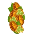 Horned Melon isolated composition vector image vector image