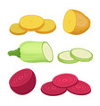 potato beet zucchini cartoon flat style vector image vector image