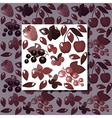 red berries vector image