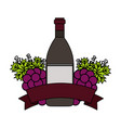wine bottles and grapes ribbon vector image vector image