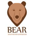 bear logo - eps10 vector image vector image