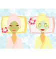 Beauty treatment vector image