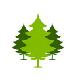 christmas green forest spruce trees simple symbol vector image