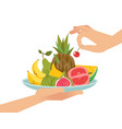 dessert fruit serving organic fruits on plate vector image