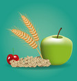 fruits and nuts vector image vector image