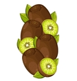 Kiwi isolated composition vector image