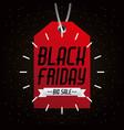 black friday big sale tag marketing inscription vector image