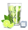 fresh mojito coctail with lime slices ice cubes vector image vector image