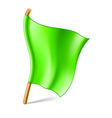 green flag vector image